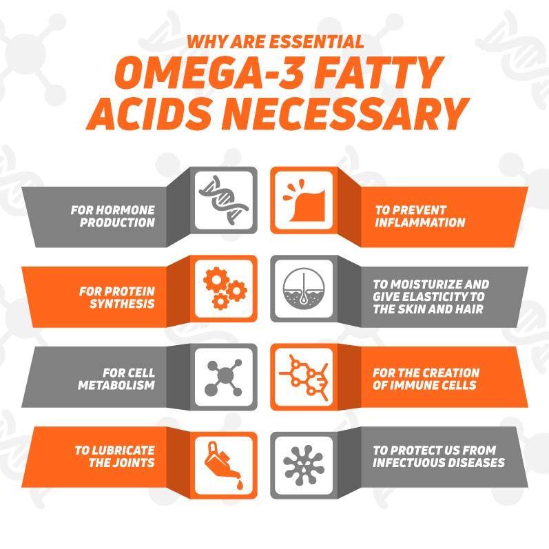 Why are Omega-3 necessary?