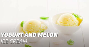 Yogurt and melon ice cream