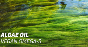 Algae Oil Vegan Omega-3