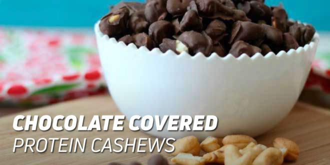 Chocolate Covered Protein Cashews