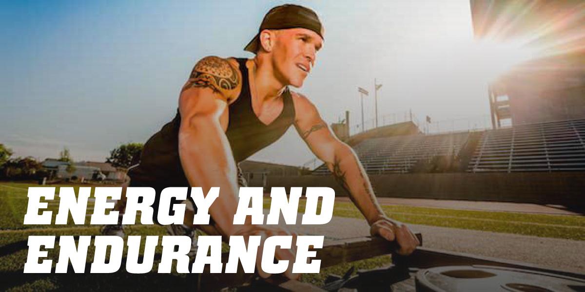 Energy and Endurance