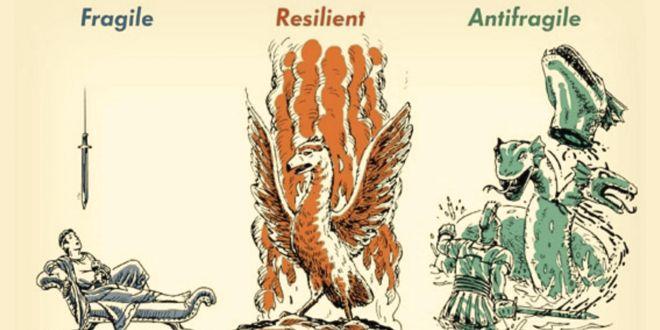Fragile, resilient, antifragile