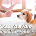 Mistakes to avoid when training at home