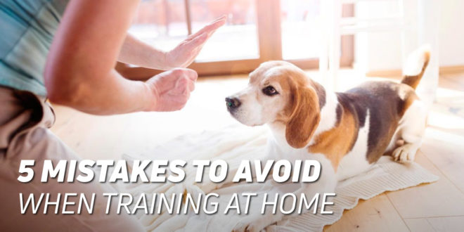 5 Mistakes to Avoid when Training at Home