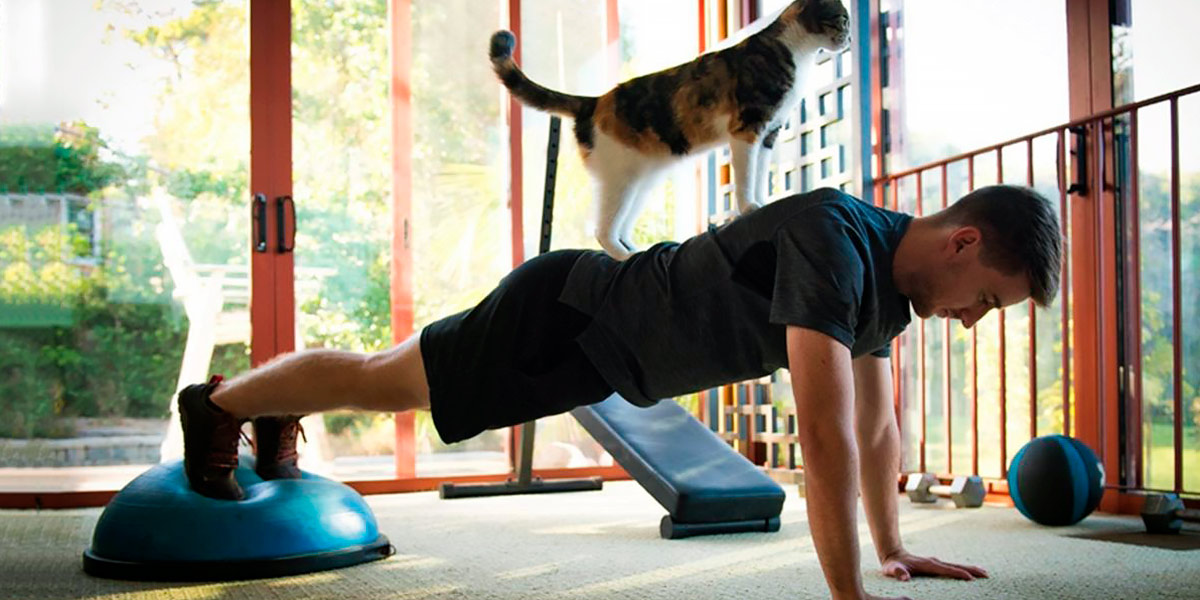 Exercise with pets