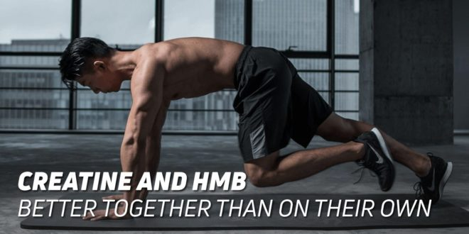 Creatine and HMB: Better Together than Apart
