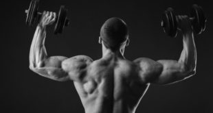 Top shoulder exercises