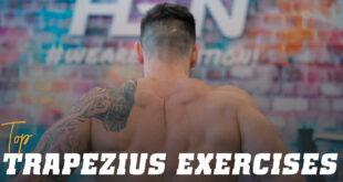 top-exercises-trapezius