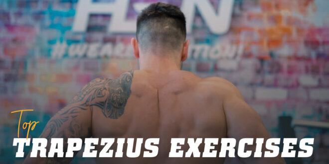Top Exercises for Bigger Trapezius