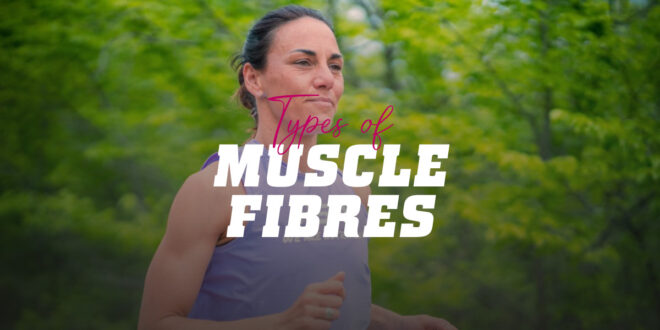Types of muscle fibre and their relationship to sport