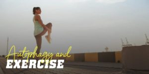 Autophagy and exercise