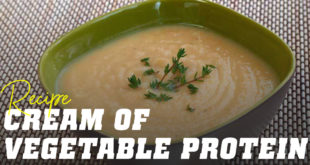 Cream of vegetable protein