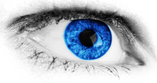Zeaxanthin - Protect your Eye Health