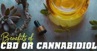 Benefits of cbd or cannabidiol