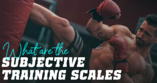 Subjetve training scales