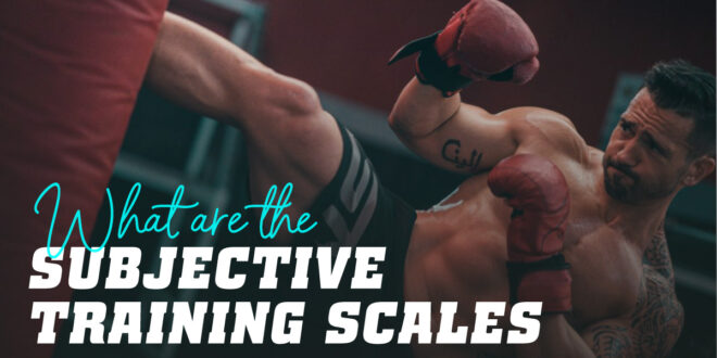 What are the Subjective Training Scales?