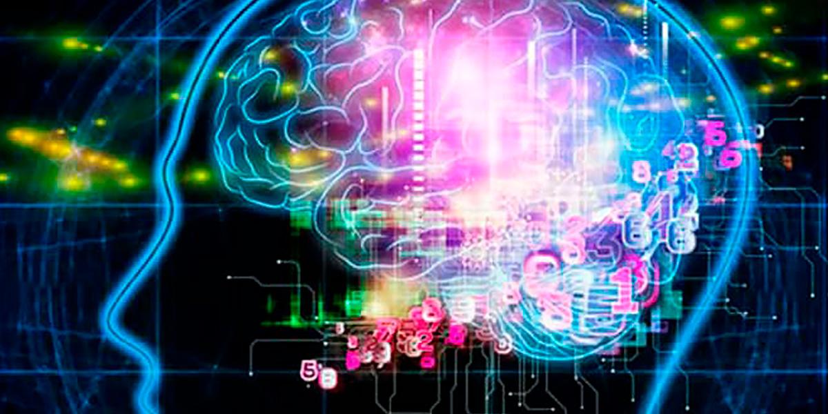 Evobrain Brain health Supplements