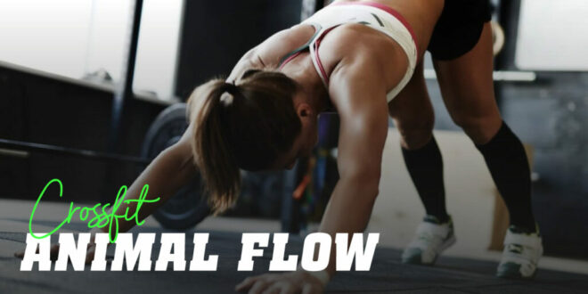 Get ready to do the Animal Flow Training Routine!