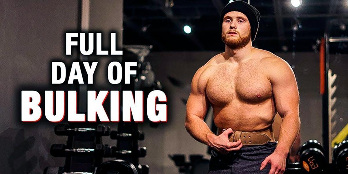 Cover of full day of bulking
