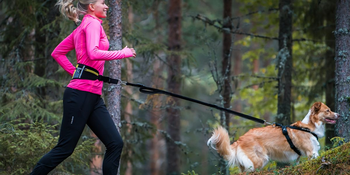 Having pets to keep active