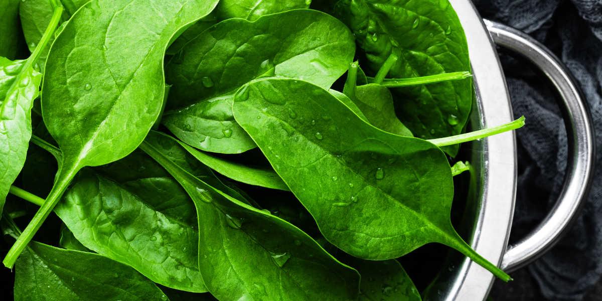 Spinach rich potassium