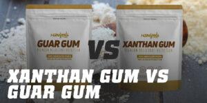 Guar Gum VS Xanthan Gum