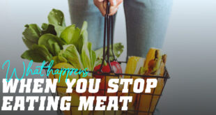 What happens when you stop eating meat