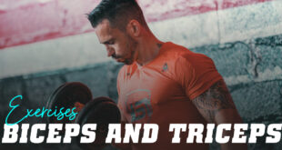 Bicep and Tricep Exercises