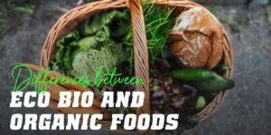 ECO, Bio and Organic Foods