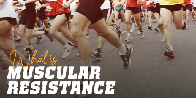 Everything you need to know about Muscular Endurance