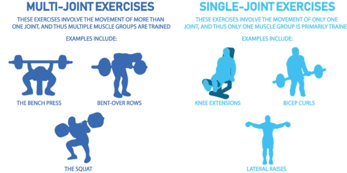 Multi- and mono-joint exercises