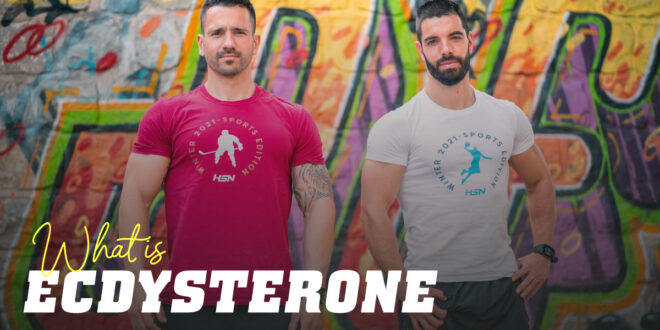 Beta-ecdysterone and its anabolic role