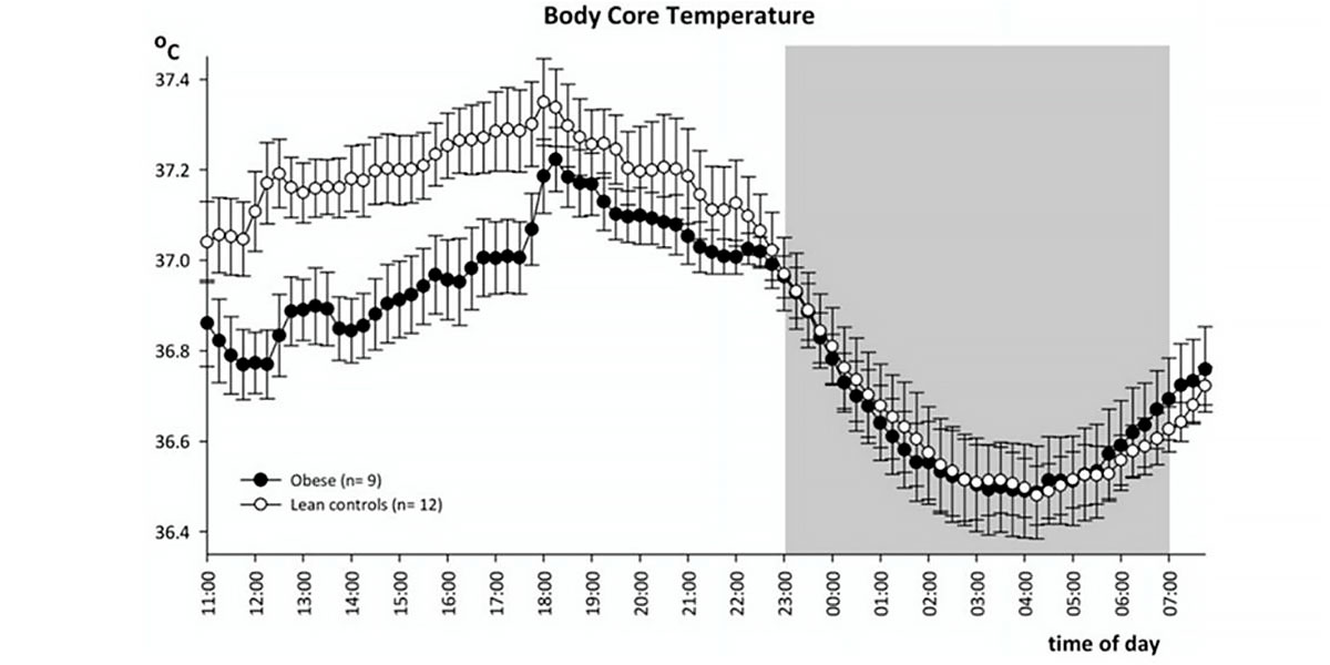 Body temperature fluctuation. Best time to train