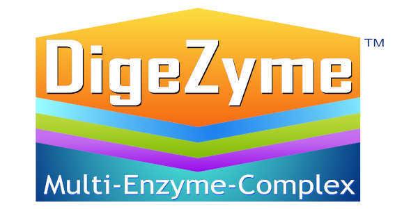 Logo Digezyme