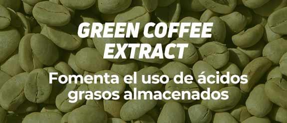Comprar Café Verde HSNessentials