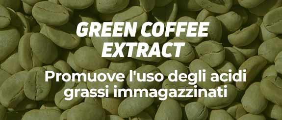 Comprare Caffè Verde HSNessentials