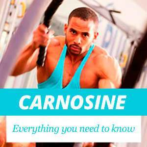 All about Carnosine