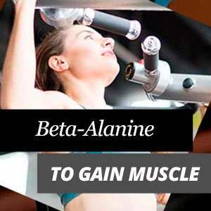 Beta-Alanine and Muscles