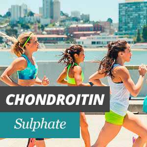 Chondroitin Properties and Benefits