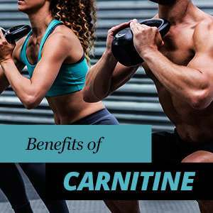 L-Carnitine Benefits and Properties