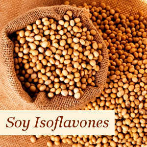 Properties and Benefits of Soy Isoflavones