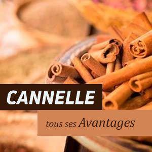 Cannelle - Avantages et Propriétés