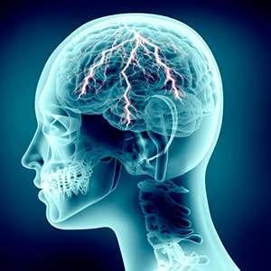 Curcuma et Système Nerveux