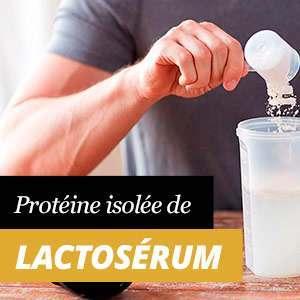 Whey Protein Isolate ou Isolat de Protéine de lactosérum