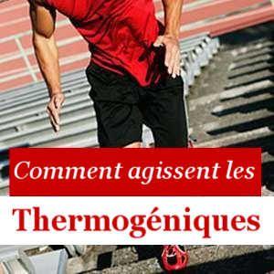 Tout au sujet des Thermogéniques