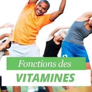 Fonctions des vitamines