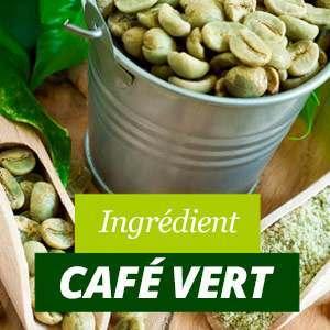 Propriétés du Café Vert
