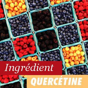 Ingrédient Quercétine