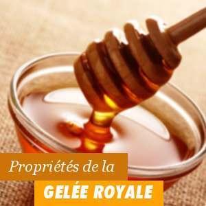 Propriétés de la Gelée Royale
