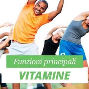 Funzioni delle Vitamine